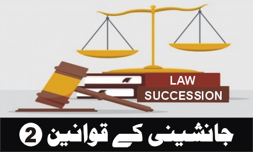 Custodianship_Pakistan